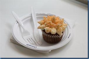 24 carrot cupcake