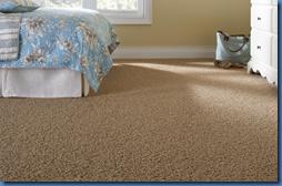 Martha Stewart Living Carpet Fawn