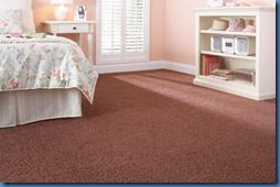 Martha Stewart Living Carpet Sequoia