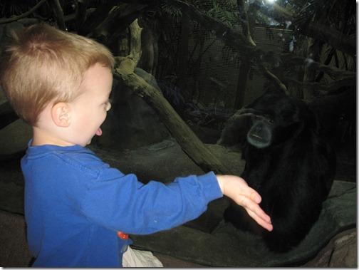 Woodland Park Zoo-0019-20100430