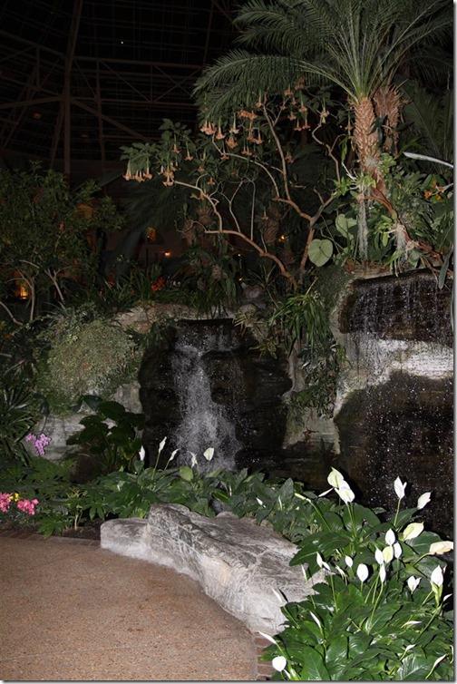 Indorr jungle