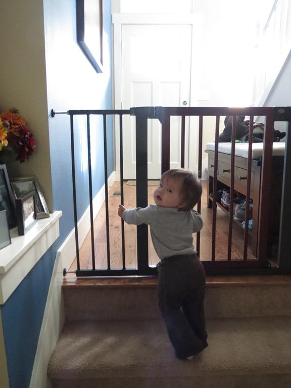 Bien-aimé Munchkin- It's the Little Things® (Deco Wood & Steel Designer Gate  AC91