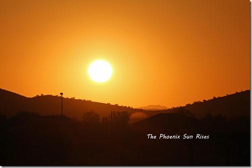 Phoenix Sun rise copy