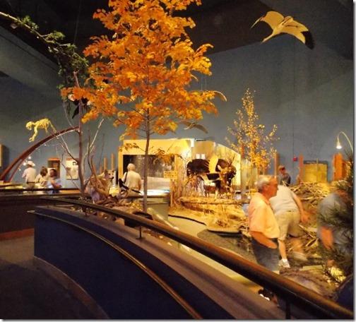 draper museum