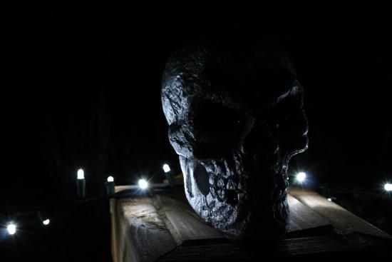 Skull & Lights