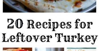 20-recipes-for-leftover-turkey.jpg