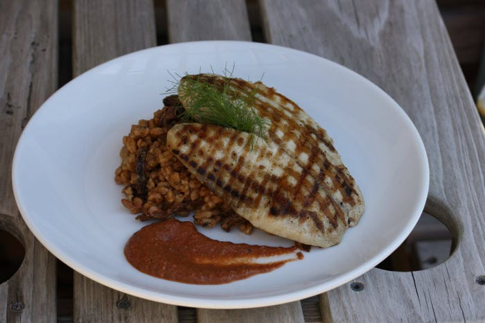 Regal Springs Grilled Tilapia over Faro with Roasted Tomato, Pepper & Garlic