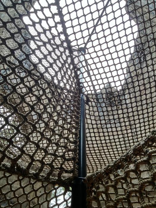 Nets inside the tree trunk