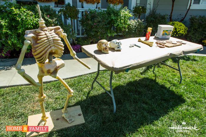 DIY Halloween Skeleton
