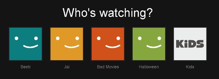 My Netflix Profiles