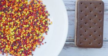 Easy Fall Ice Cream Sandwiches Recipe