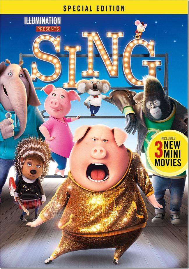 Sing-BoxArt-2D