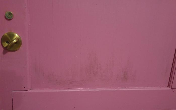 Mildew stains on the door