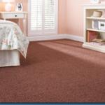 Martha Stewart Living & Premium Plus Carpet Collections at Home Depot