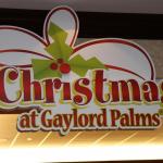 Shrek The Halls ICE at Gaylord Palms Kissimmee Florida