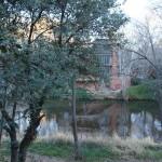Photography: A House Through the Trees #SedonaSony