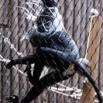 Photography: Monkey Motion at Animal Kingdom