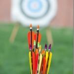 Photography: Brave Arrows #BraveCarsLandEvent