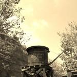 Photography: Cars Land Disneyland California Adventures Stanley's Oasis