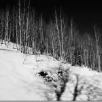 Nature Photography: Crisp #SonyCanyons