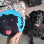Bob's Squeaky Toy Portrait