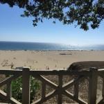 Photography: Santa Monica Beach