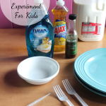 Open Sesame: A Fun Experiment For Kids #DawnHelpsSaveWildlife