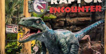 Jurassic World Fans Can Now Meet Blue at Raptor Encounter + More Fun!